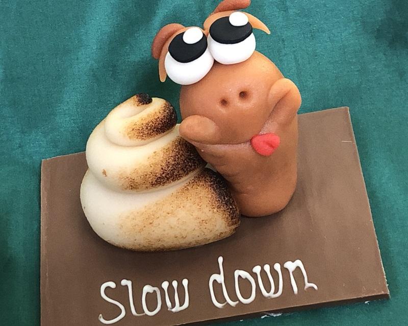 Slow-Down Schnecke